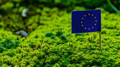 Photo of LA UNIÓN EUROPEA LANZA UN «PLAN VERDE» PARA ELIMINAR LOS AUTOS A COMBUSTIÓN
