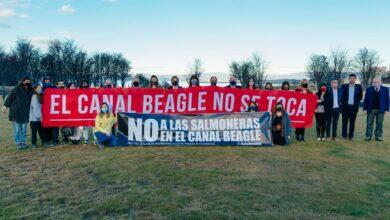 """Photo of VILLEGAS: """"LA PROHIBICIÓN A LA SALMONICULTURA INDUSTRIAL ES UN LOGRO DE TODOS LOS FUEGUINOS"""""""